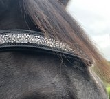 Shine drop hoofdstel Zwart Bridle & Ride _