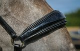 Shine drop neusriem Zwart Bridle & Ride _