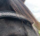 Shine Frontriem Zwart Bridle & Ride _