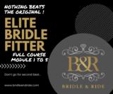 Elite Bridle Fitter : module 1 tem 5 excl Bridle Mechanics _