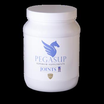Pegasup Joints