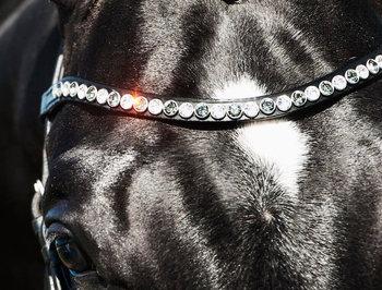 Zizi Frontriem Swarovski Crystal Black XL