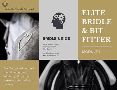 Elite Bridle & Bit Fitter : Module 1