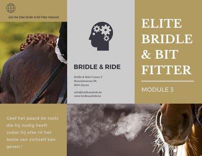 Elite Bridle & Bit Fitter : Module 3
