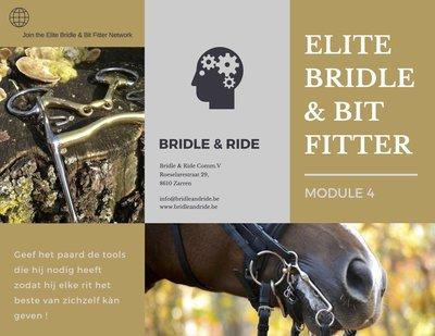 Elite Bridle & Bit Fitter : Module 4