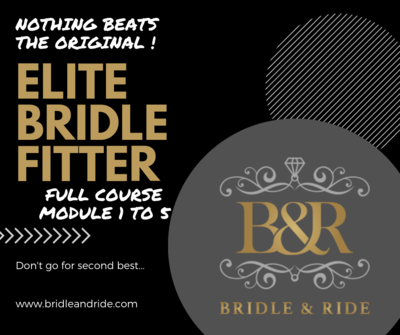 Elite Bridle Fitter : module 1 tem 5 excl Bridle Mechanics