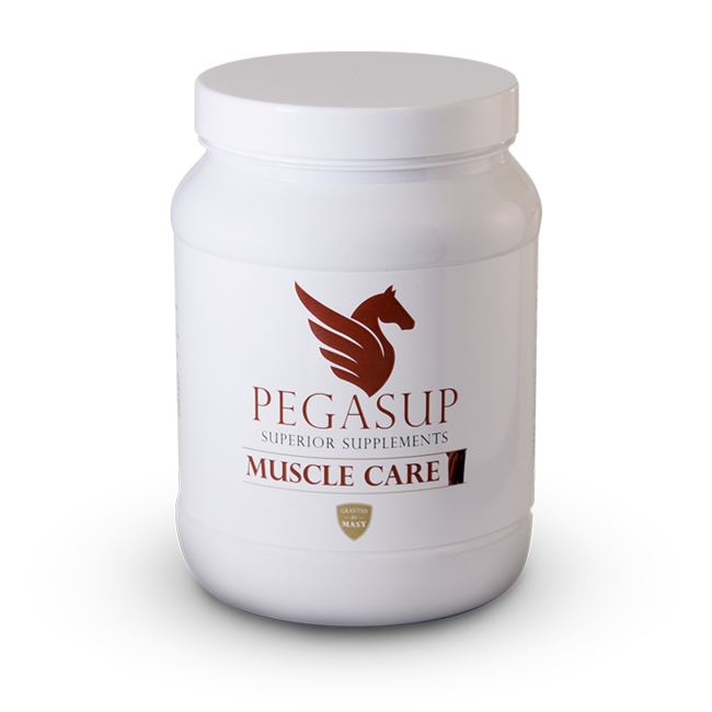 Pegasup Muscle