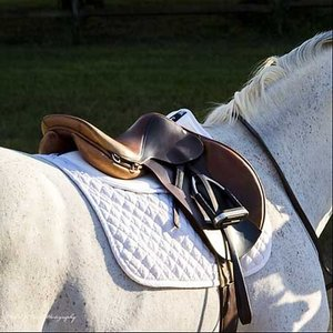 Ultra Thinline Trifecta Cotton Halfpad