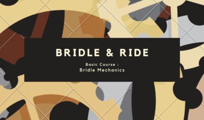 Bridle-Mechanics : The Basics