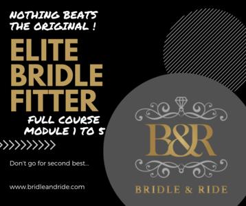 Elite Bridle Fitter : module 1 tem 5 excl Bridle Mechanics